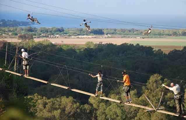 Casela : découvrez les activités familiales du parc comme le pont aux singes