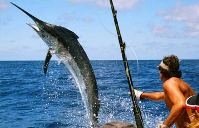Excursion pêche au gros
