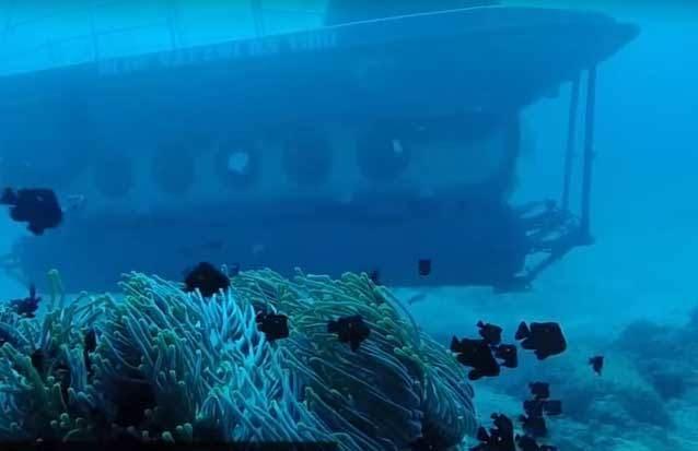 visite des fonds marins à 35metres de profondeur
