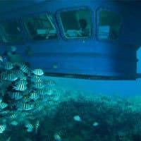 Découvrez les fonds marins mauriciens en toute quiétude
